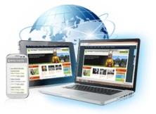 website-sekolah